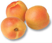 glossary_a/fruit_apricot.jpg