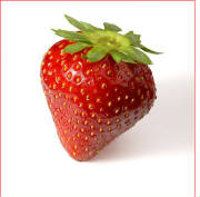 glossary_s/fruit-strawberry2.jpg
