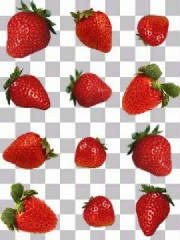 glossary_s/strawberry.jpg